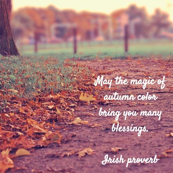 Irish Proverb: On the Magic of Autumn