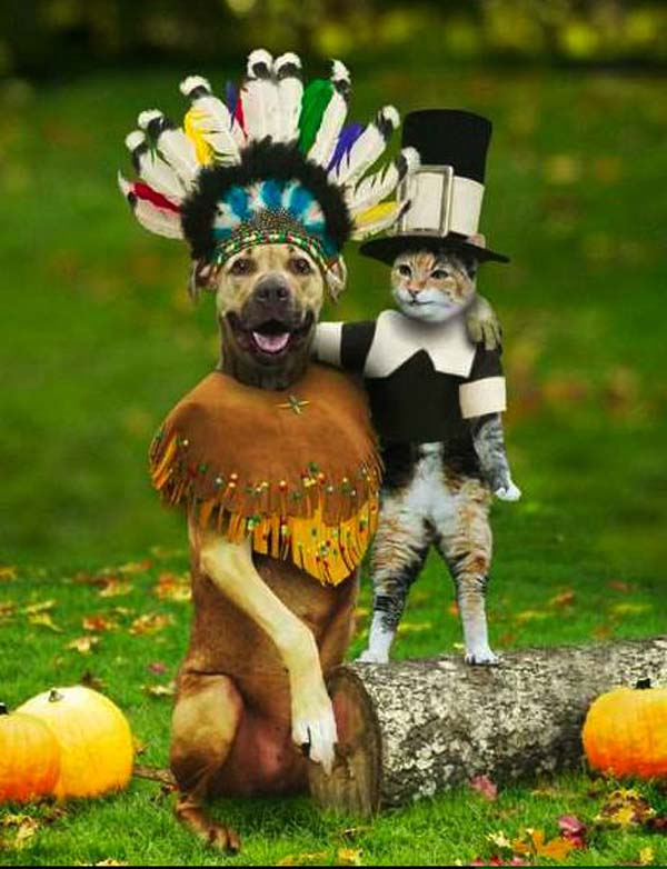 Happy Thanksgiving Joy