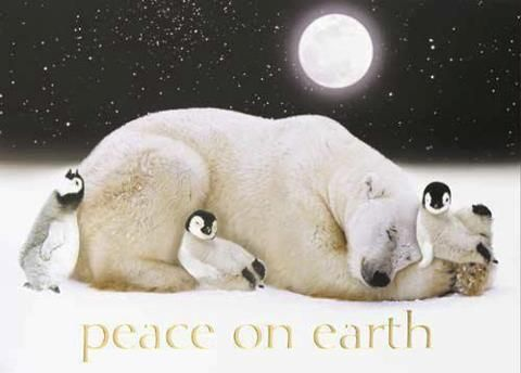 Peace on Earth Greetings: During this holiday season, we wish everyone a little peace — and a whole lot of peace on Earth.