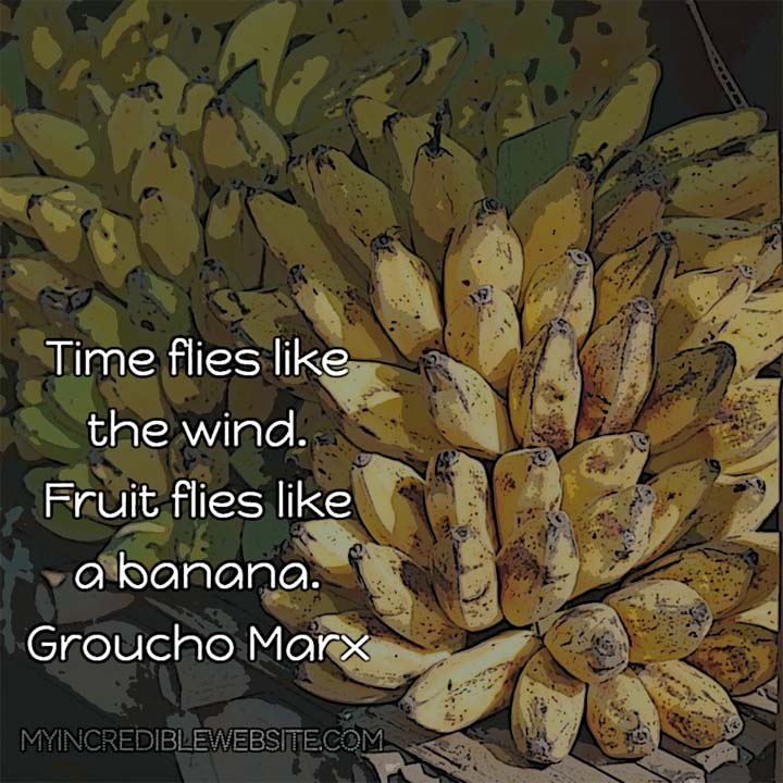 Groucho Marx joke: Time flies like the wind. Fruit flies like a banana. — Groucho Marx, comedian