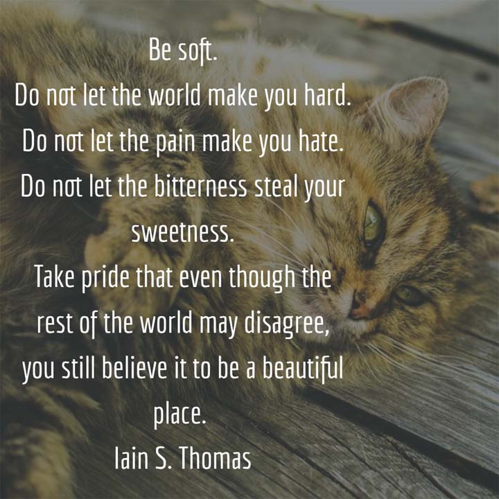 Be soft. Do not let the world make you hard. Do not let the pain make you hate. Do not let the bitterness steal your sweetness. Take pride that even though the rest of the world may disagree, you still believe it to be a beautiful place. — Iain S. Thomas