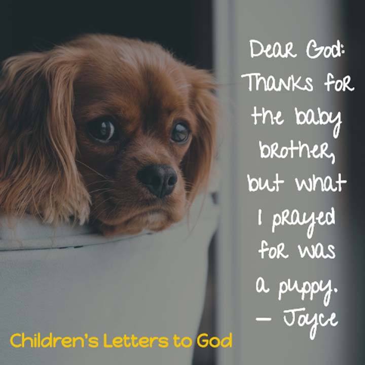Dear God: Thanks for the baby brother but what I prayed for was a puppy. — Joyce