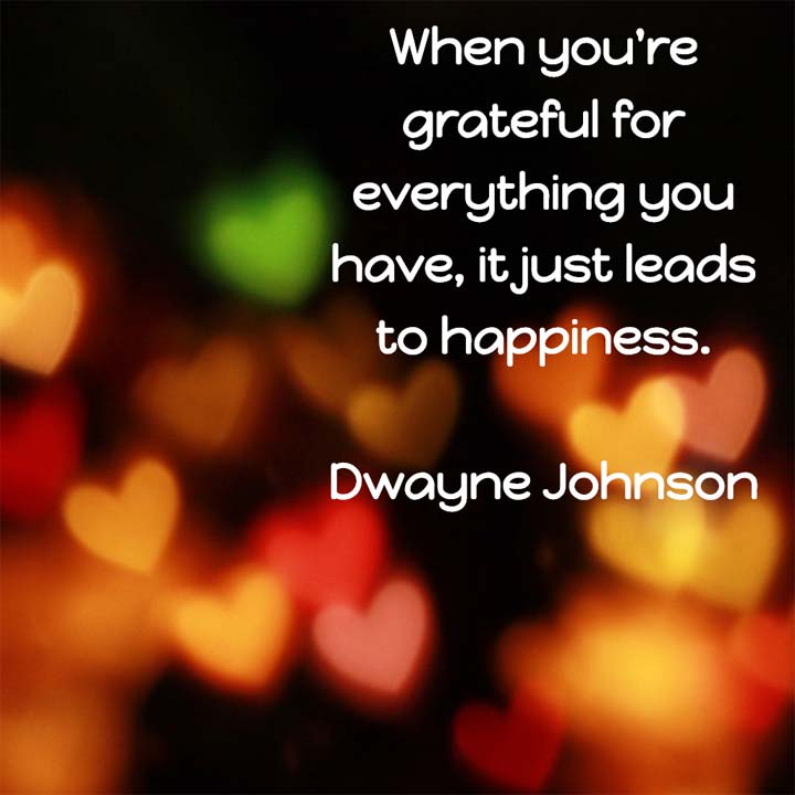 Thanksgiving quote: When you're grateful for everything you have, it just leads to happiness. — Dwayne Johnson, wrestler and actor