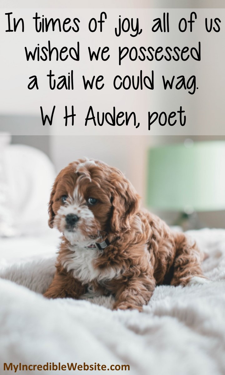 In times of joy, all of us wished we possessed a tail we could wag. — W. H. Auden, poet #dogs #puppylove #joyquote #dogquote