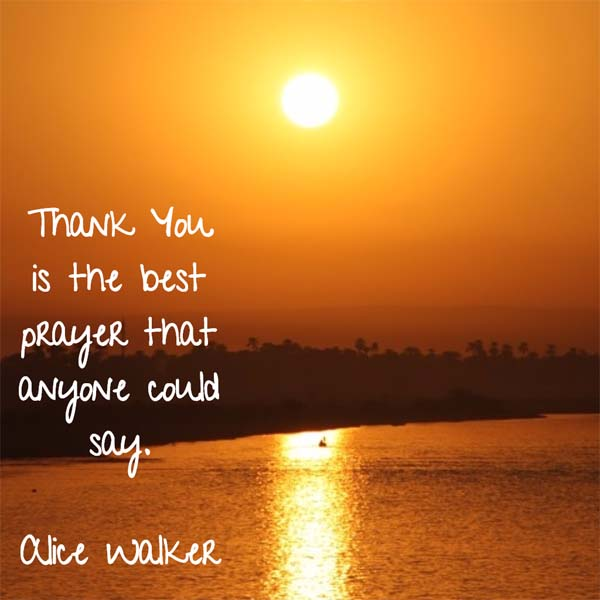 Alice Walker on Thank You - Thank You is the best prayer that anyone can say.