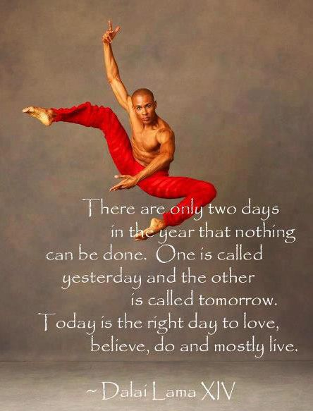 There are only two days in the year that nothing can be done. One is called yesterday and the other is called tomorrow. Today is the right day to love, believe, do, and mostly live. – The Dalai Lama