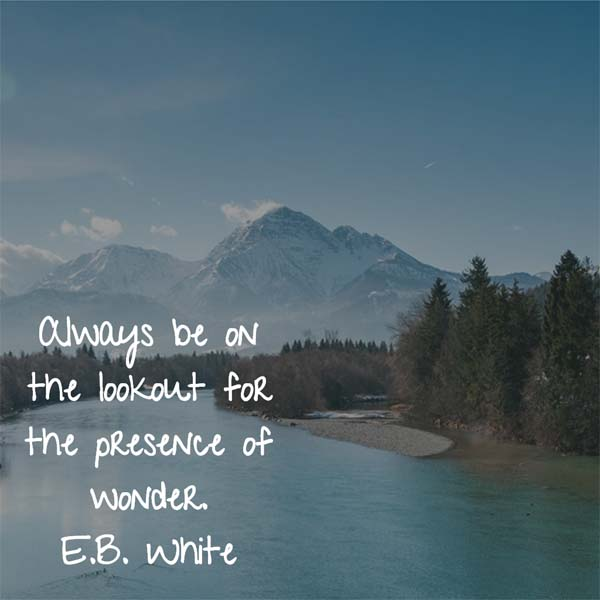 E.B. White on Wonder: Always be on the lookout for the presence of wonder.