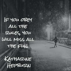 Katharine Hepburn: Don't Miss All the Fun