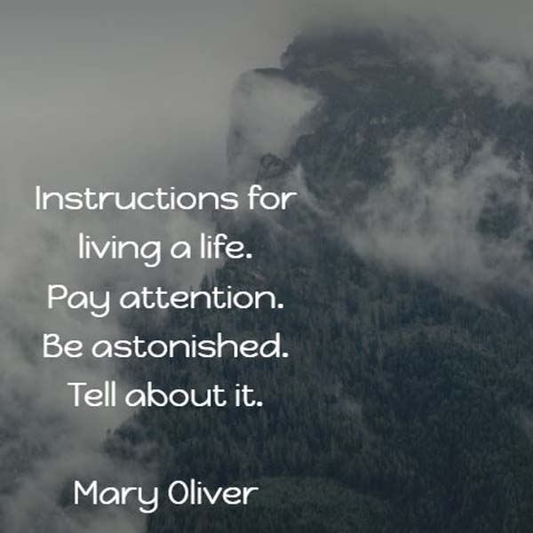 Mary Oliver: Instructions for Living a Life
