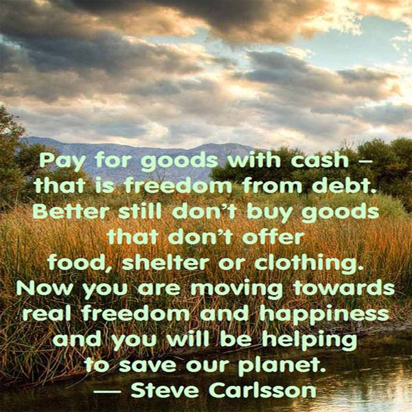 Pay for goods with cash – that is freedom from debt. Better still don't buy goods that don't offer food, shelter or clothing. Now you are moving towards real freedom and happiness and you will be helping to save our planet. - Steve Carlsson