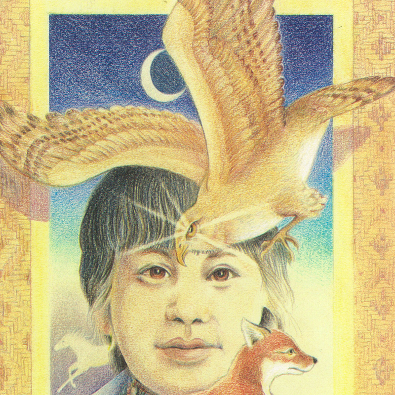 Little Fox and the Golden Hawk by Gail Berry
