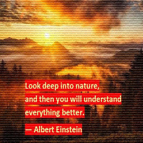 Albert Einstein Look Deep Into Nature