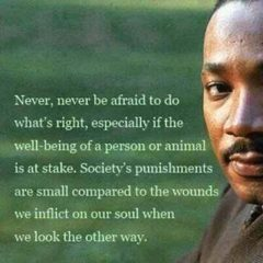 Martin Luther King Jr. on doing what's right