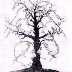 ambiguous-heads