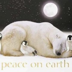 Peace on Earth Greetings