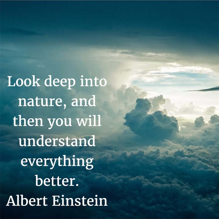 The Quotable Albert Einstein: Look deep into nature, and then you will understand everything better. — Albert Einstein, physicist