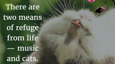 Albert Schweitzer on music and cats