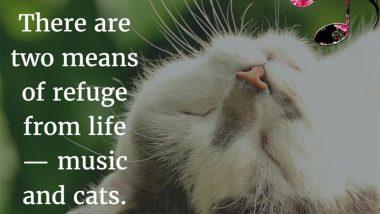 Albert Schweitzer on music and cats