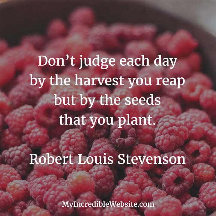 Robert Louis Stevenson on Harvests: Don't judge each day by the harvest you reap but by the seeds that you plant.