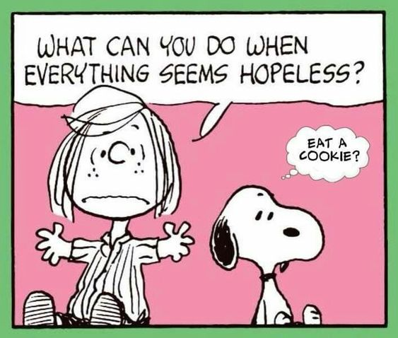 Eat a cookie when everything seems hopeless!