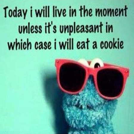 Today I will live in the moment, unless it's unpleasant, in which case I will eat a cookie. — Cookie Monster