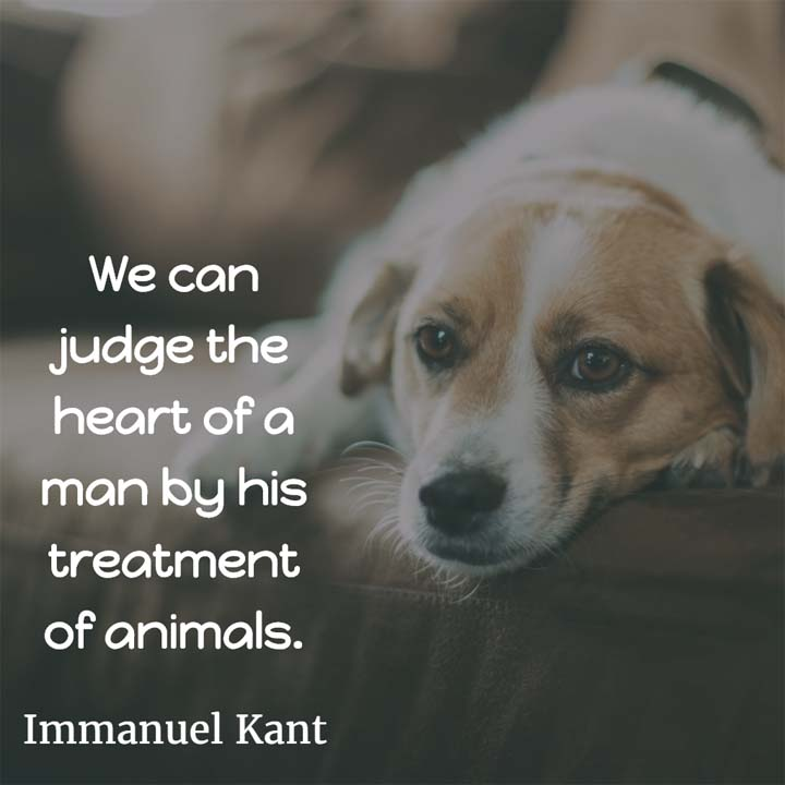 Immanuel Kant on the heart of men