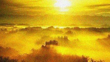 Golden Sunset Colors