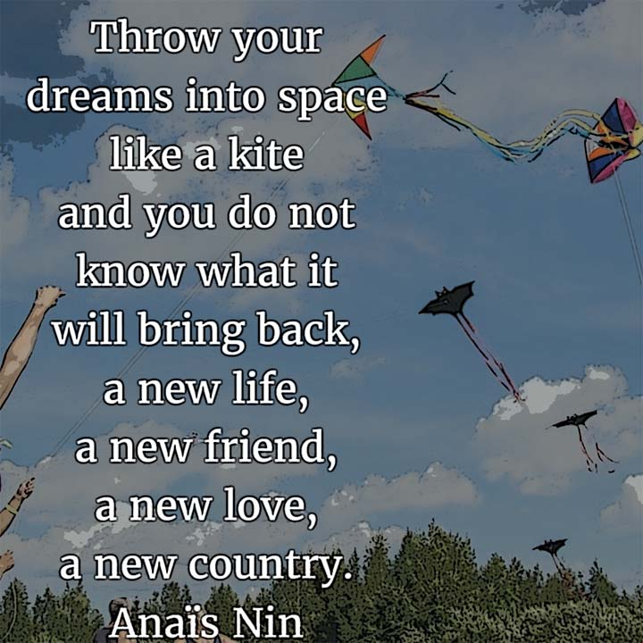 Anais Nin on Dreams: Throw your dreams into space like a kite and you do not know what it will bring back, a new life, a new friend, a new love, a new country.