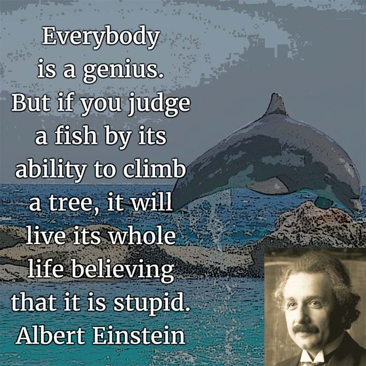 Everybody is a genius. But if you judge a fish by its ability to climb a tree, it will live its whole life believing that it is stupid. — Albert Einstein