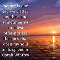Oprah Winfrey on Nature