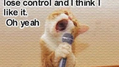 Singing Cat Meme