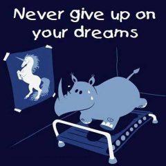 Rhino - Unicorn Meme