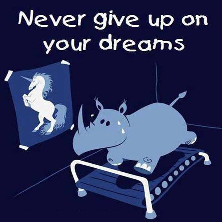 Never give up on your dreams. Go rhino! Go! You can change into a unicorn!
