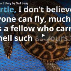 Believe: The Video