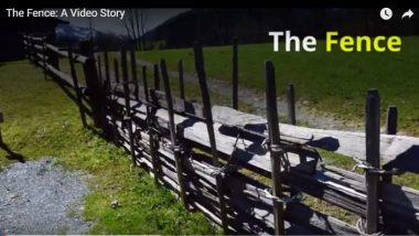 The Fence: A Video Story