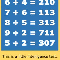 A Little Intelligence Test