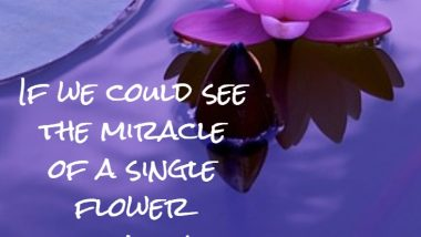 Buddha on Miracles