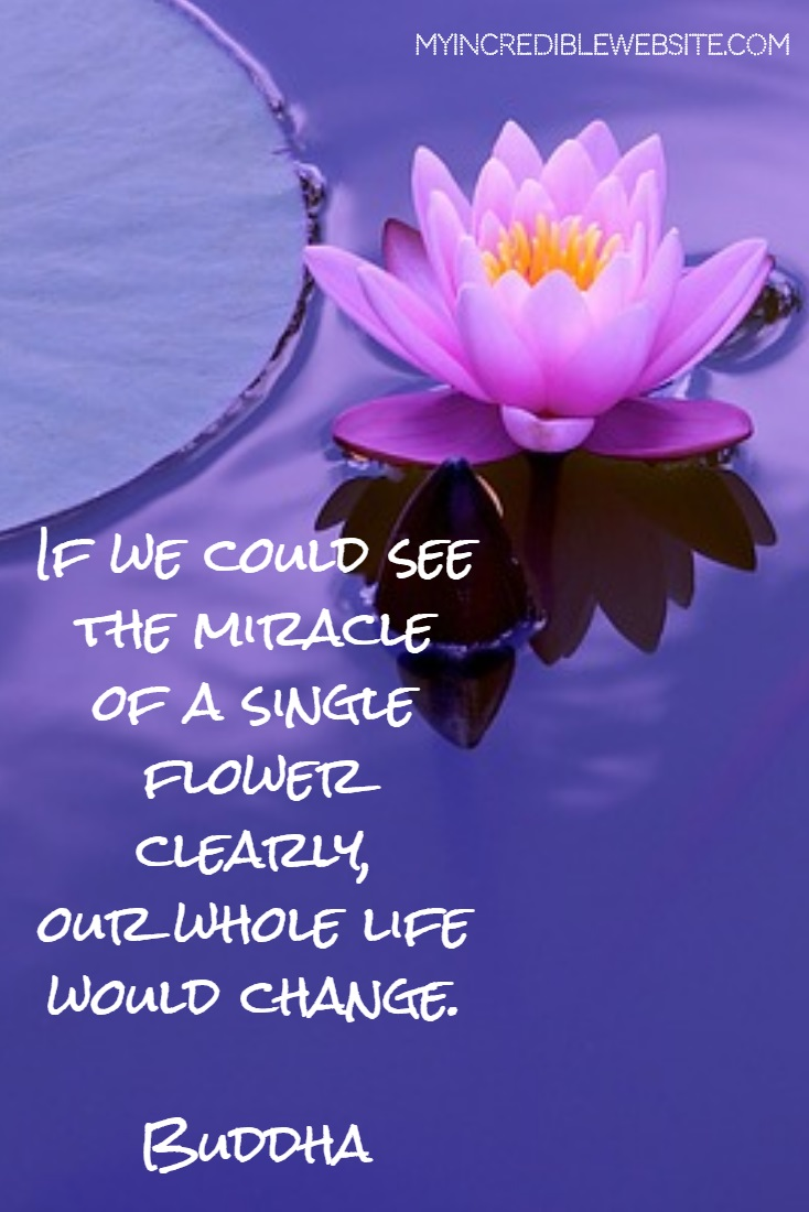 Buddha: On Miracles - If we could see the miracle of a single flower clearly, our whole life would change.