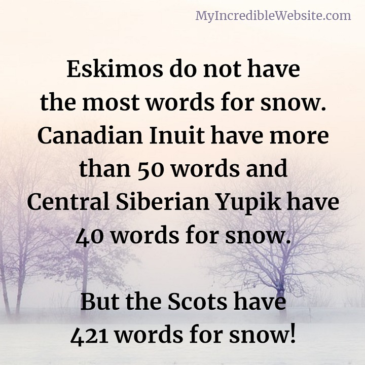 Words for Snow: Canadian Inuit have more than 50 words and Central Siberian Yupik have 40 words for snow. But the Scots have 421 words for snow!