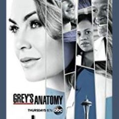 Grey's Anatomy medical TV series on ABC