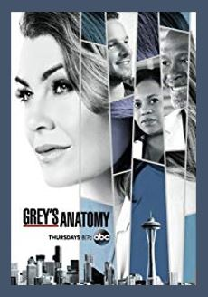 Grey's Anatomy medical TV series on ABC - Do you love Washington state, television, or TV series? Then check out these TV shows set in Washington or television series related to Washington. I Love Washington!