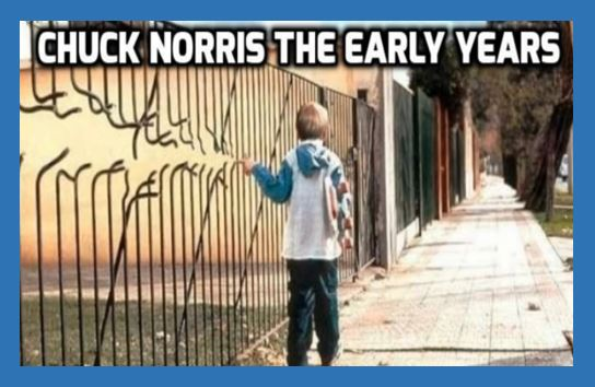Chuck Norris: The Early Years including super-verified Chuck Norris Facts and Chuck Norris Memes