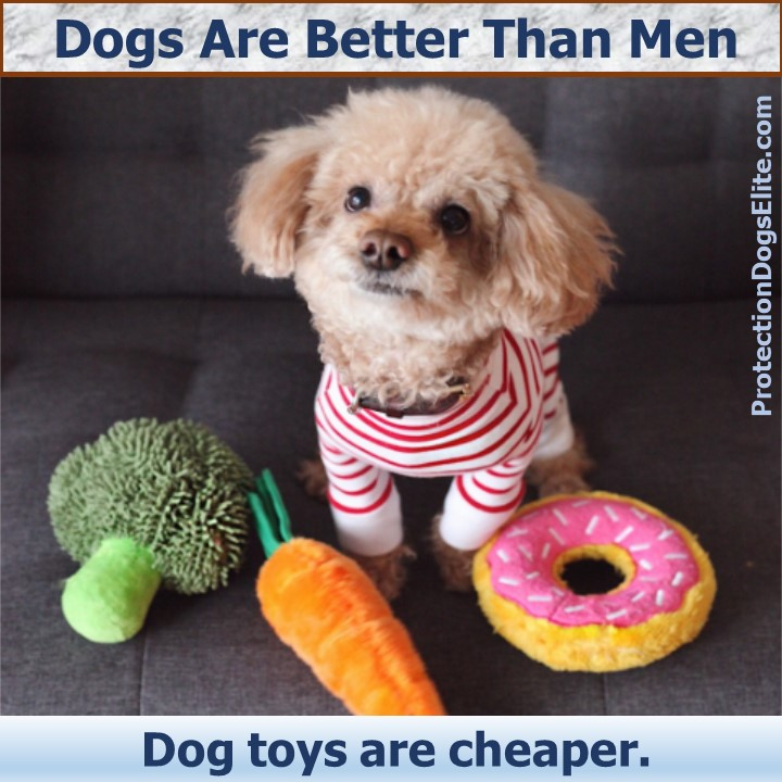 Dogs are better than men: Dog toys are cheaper. I Love Dogs! #doglove