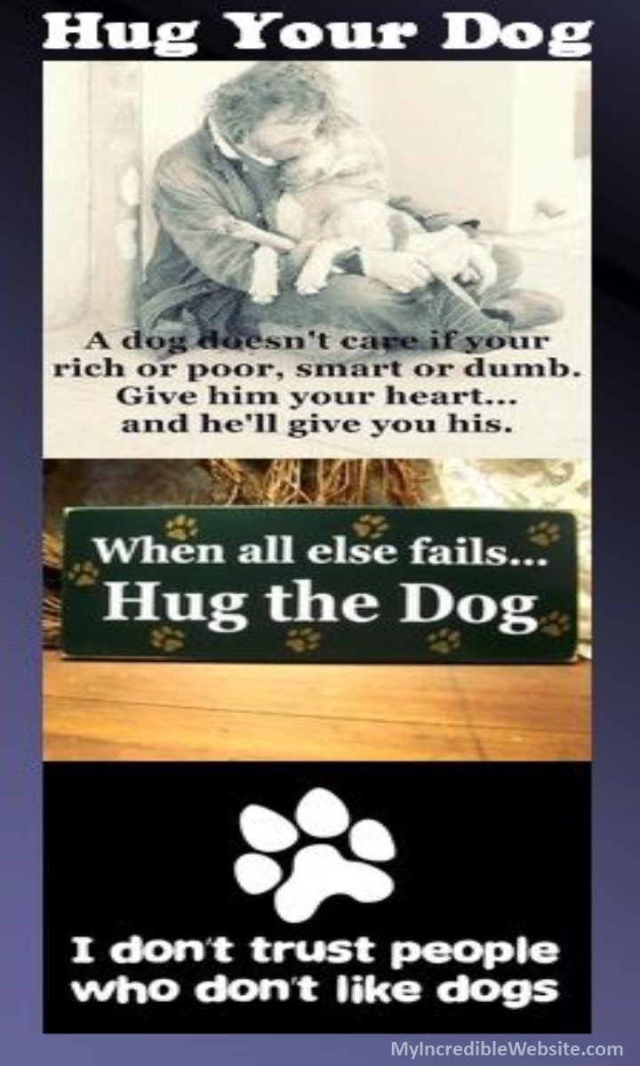 Hug Your Dog: A dog doesn't care if you're rich or poor, smart or dumb. Give him your heart, and he'll give you his. When all else fails, hug the dog! I don't trust people who don't like dogs. #dogs #puppies