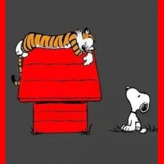 Snoopy and Hobbes: A Great Comic Combo