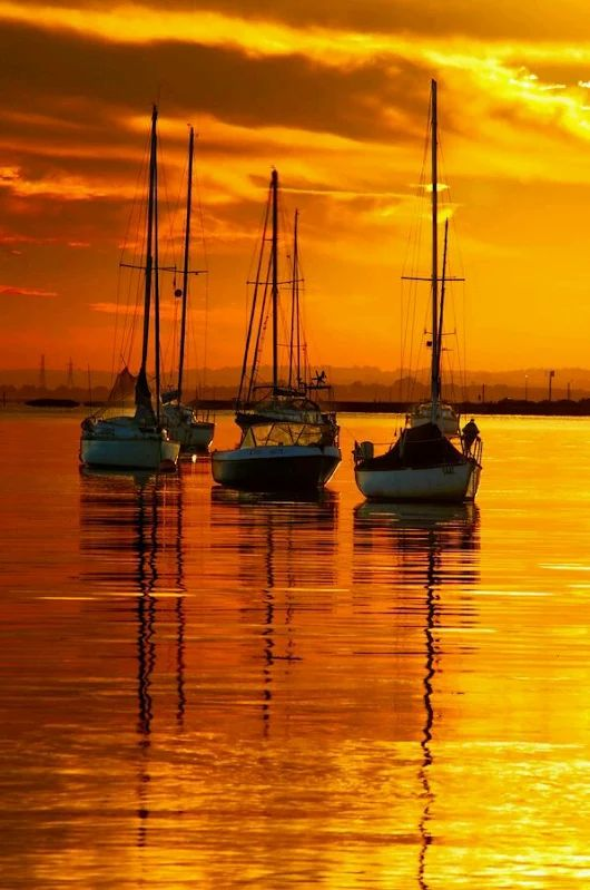 This is a beautiful image of sailboats at sunset that I discovered on Pinterest. #beautifulsunset #beautifulsailboarts