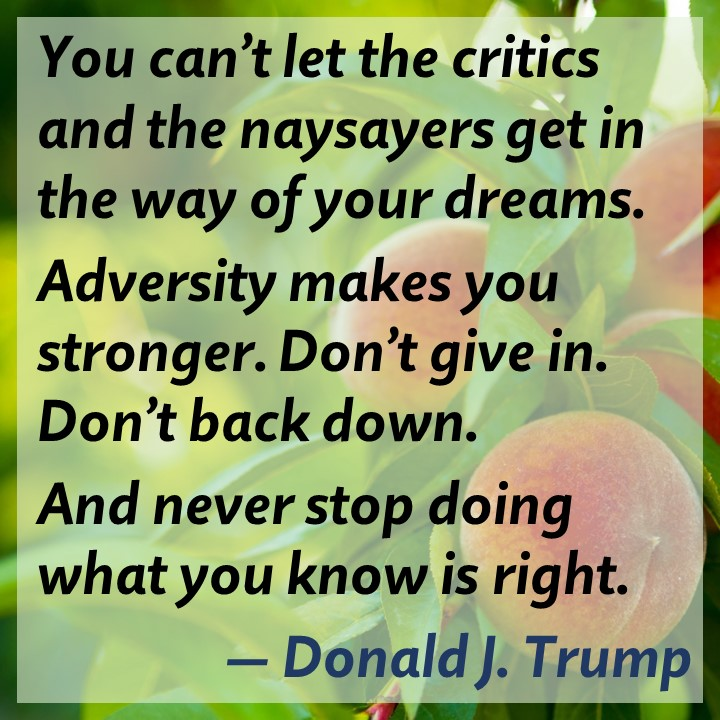 Donald Trump on Persistence