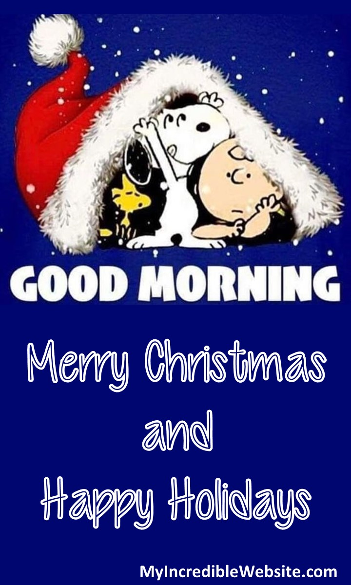 Good Morning, Merry Christmas, and Happy Holidays from Snoopy, Charlie Brown, and Woodstock