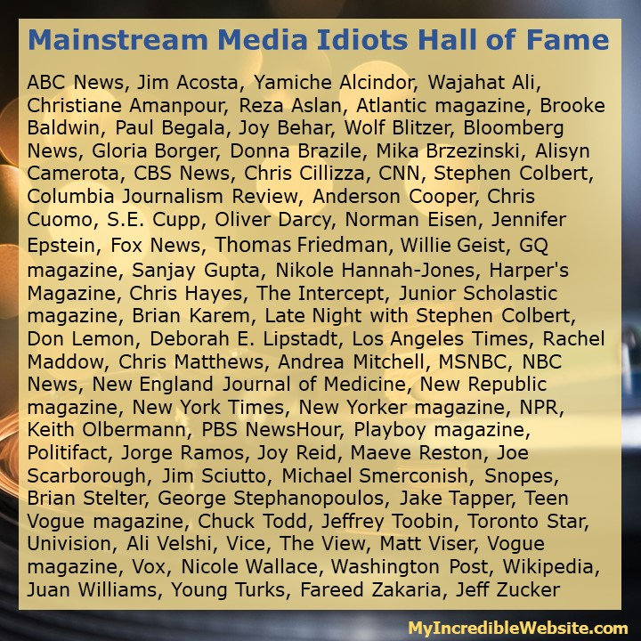 Mainstream Media Idiots Hall of Fame