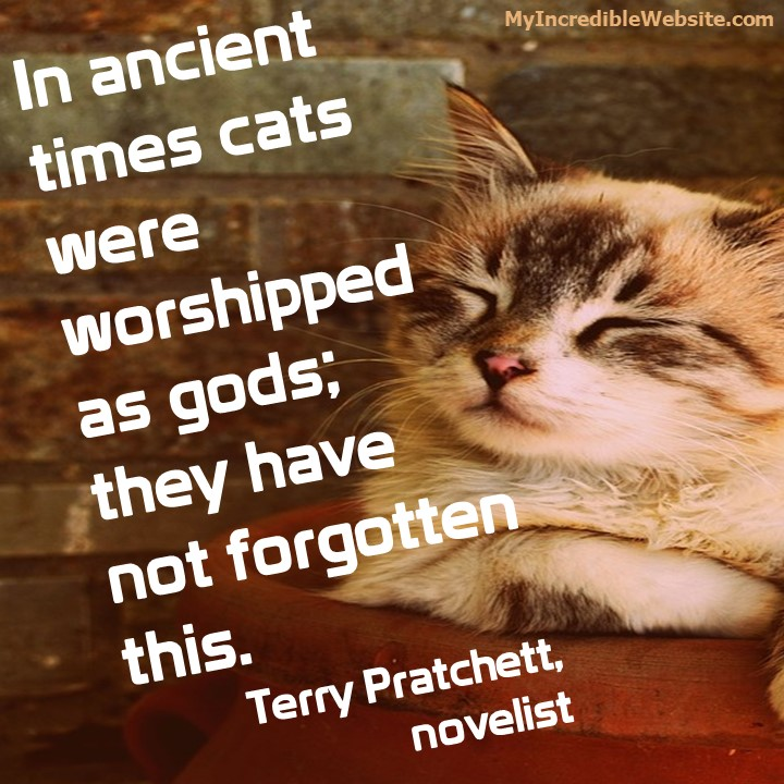 In ancient times cats were worshipped as gods; they have not forgotten this. — Terry Pratchett, novelist
